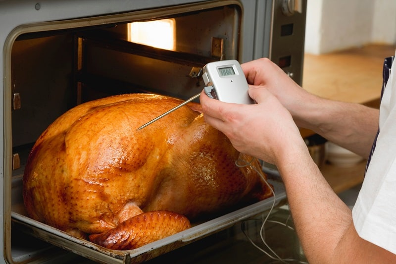 Where To Put Meat Thermometer In A Turkey